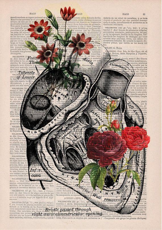 e12987cc0b8a8fae2363ad55d0502a43–human-anatomy-art-art-heart-anatomy ...